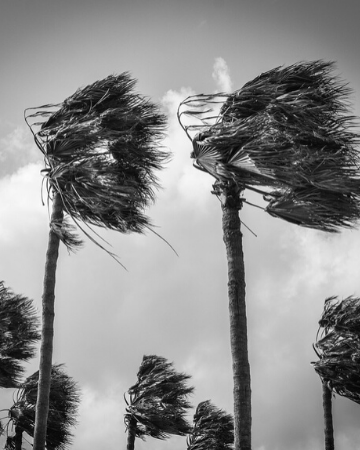 Storm Preppers - How to Prepare for the 2019 Hurricane Season - Updated