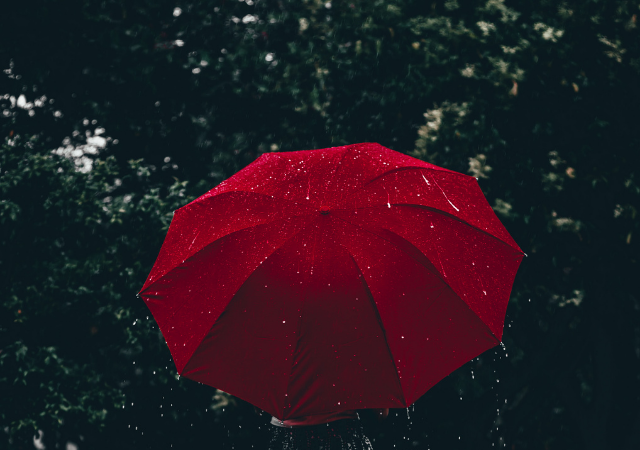 Storm Preppers - 10 Best Umbrellas for Heavy Rains and Gusty Winds
